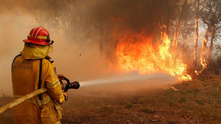 fireman distinguishing bush fire
